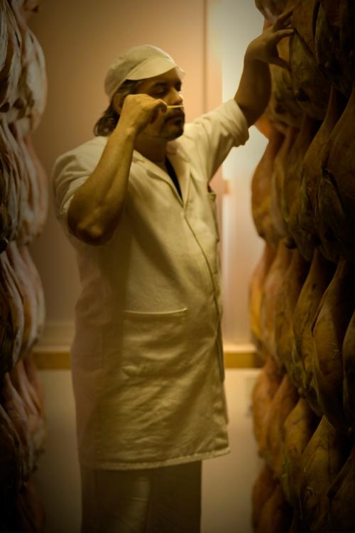controllo degli aromi del prosciutto - foto Marco Signorini