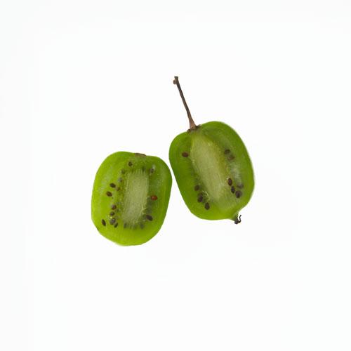kiwi arguta, foto paolo nobile