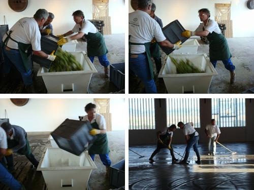 © Spremitura dell'uva e successive pulizie nella cantina della Marquetterie