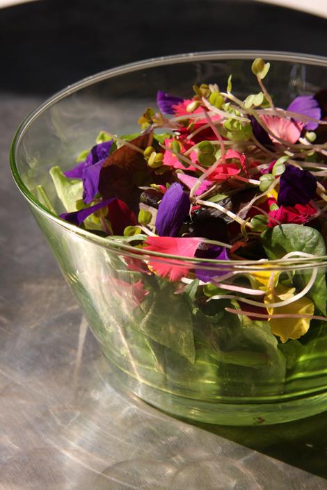 insalata fiorita | ©foto Sandra Longinotti