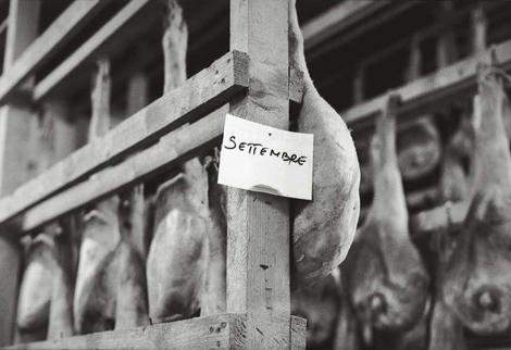 stagionatura del prosciutto di San Daniele - foto Mario Dondero
