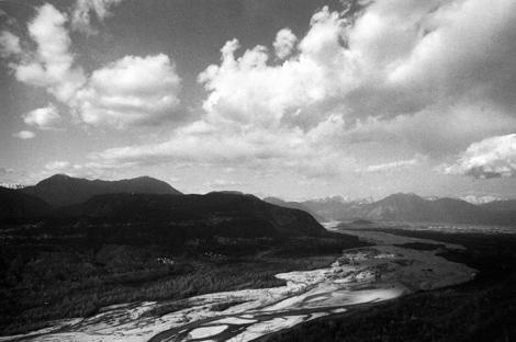 il fiume Tagliamento  -  foto Mario Dondero