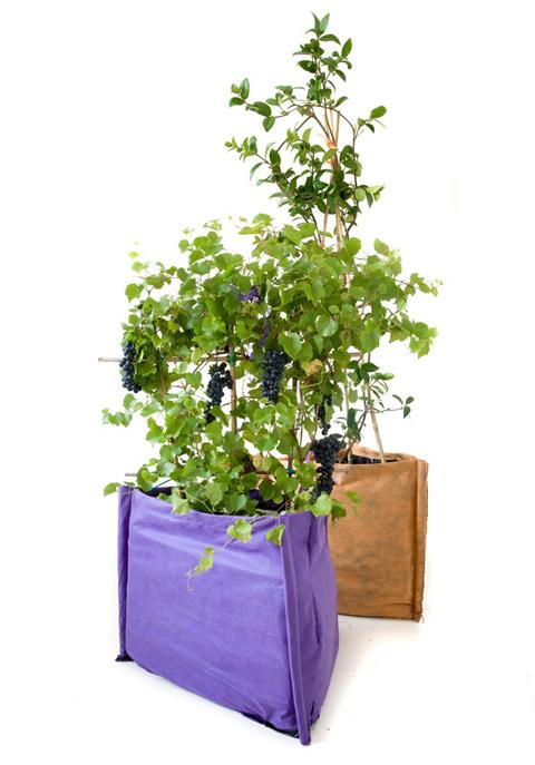 Triangolo, il vaso morbido ecosostenibile per piante di medie dimensioni, di 13Ricrea