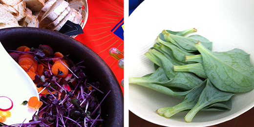 """© l'insalata al succo d'arancia e le foglie """"che sanno d'ostrica"""" #spritzathome"""