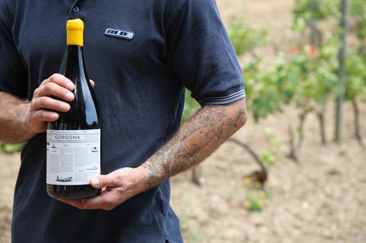 Gorgona, il vino prodotto da Frescobaldi in collaborazione coi detenuti del Carcere di Gorgona (©foto Federica Fioravanti)