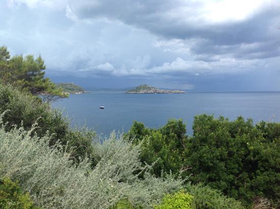 Vista mare - Il Pellicano | ©Sandra Longinotti