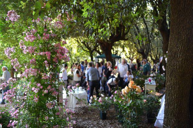 I Giorni delle Rose, la manifestazione dedicata alla rosa che ha luogo nel parco di Villa Fidelia a Spello