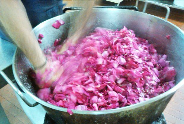 La lavorazione dei petali di rosa nei laboratori dell'Antica Confetteria Pietro Romanengo per la produzione dello Sciroppo di Rose