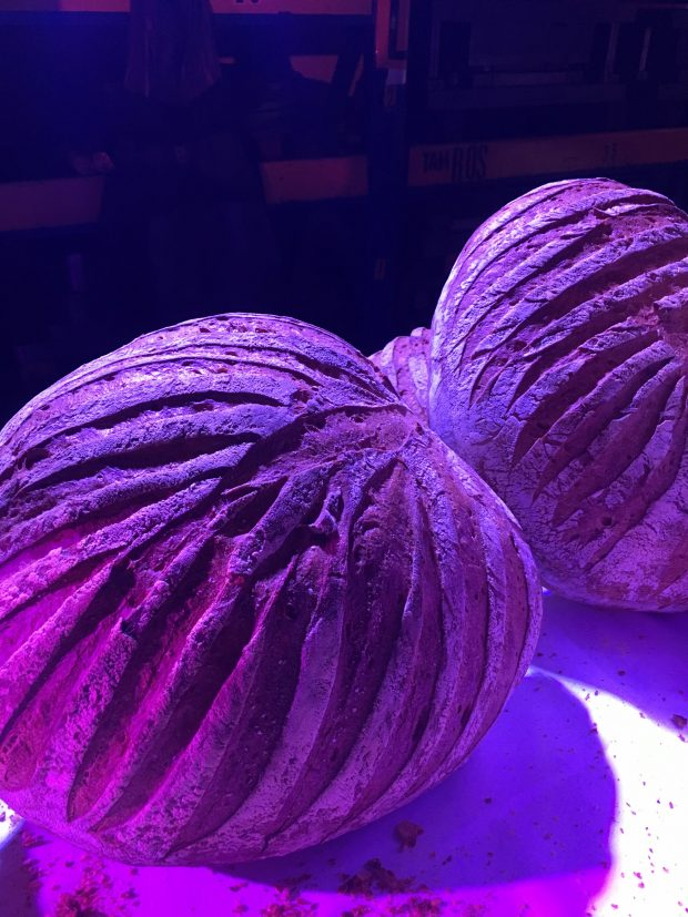 farine macinate a pietra certo, ma con la luce giusta il pane dei Fratelli Longoni diventa POP \ al Factory Party di Pentole Agnelli